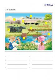 English Worksheets: safari animals
