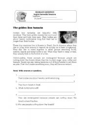English Worksheets: The Golden Lion tamarins