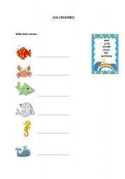 English Worksheets: Sea Creatures
