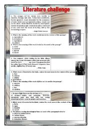 English Worksheets: Literature challenge 1