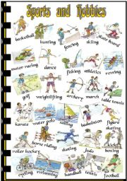 English Worksheets: Sports and Hobbies