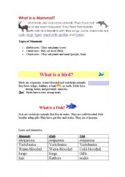 English Worksheet: mammals, birds, fish
