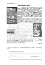 English Worksheet: Why are animals in danger - written test