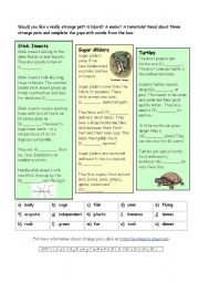 English Worksheets: Strange Pets