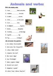 English Worksheets: Animals and verbs
