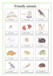 English Worksheets: friendly animals voc (2sheets)