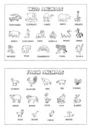 Animal mini-dictionary (B&W) 1/3
