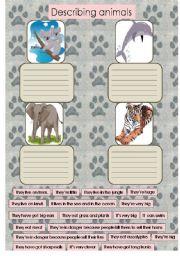 English Worksheets: Describing animals