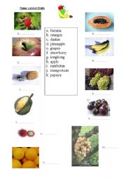 English Worksheet: Tropical Fruits in Thailand!!!!!