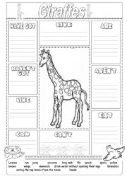 English Worksheet: Animal description giraffe