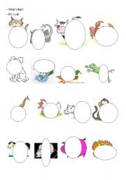 English Worksheets: Guessing the animals