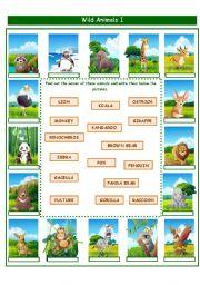 English Worksheet: WILD ANIMALS!