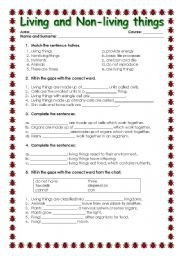 English worksheets: LIVING AND N-LIVING THINGS