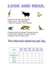 English Worksheets: Read about animals