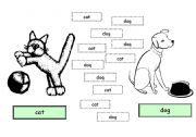 English Worksheets: Animals for young learners