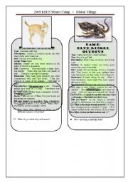 English Worksheet: Australian Animals - Adaptations 2/3