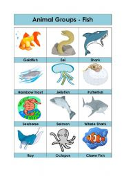 English Worksheets: Animal Groups-Fish (3/5)