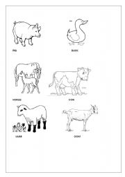English Worksheets: Coloring faarm animals