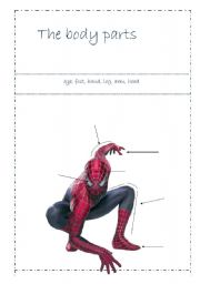 English worksheet: Spiderman - body parts