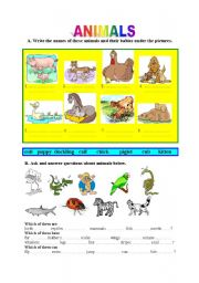 English Worksheet: Animals -babies, descriptions