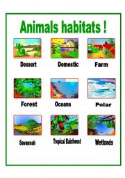 math worksheet : english teaching worksheets animal habitats : Animal Habitat Worksheets For Kindergarten