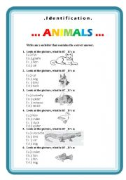 English Worksheets: Animals, identification