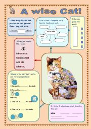 English Worksheets: A WISE CAT! Revision for kids.