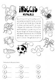 English Worksheet: �nsects wordsearch