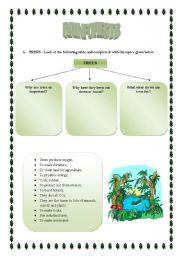 English Worksheet: Rainforests