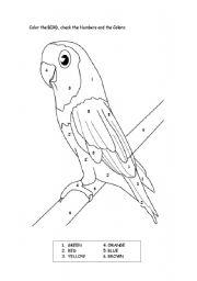 English Worksheets: Bird colors