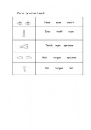 English Worksheets: face - activity 3 a