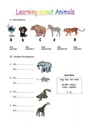 English Worksheets: Learning about Animals