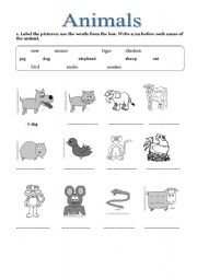 label the animals esl worksheet by arwood. Black Bedroom Furniture Sets. Home Design Ideas