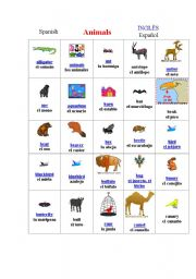 English Worksheets: Animals of all types