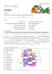 English Worksheets: Science: Transport - The Heart