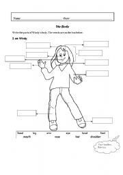 English Worksheet: Windy�s body