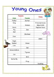 The animals worksheets
