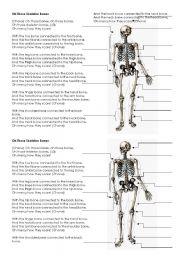 English Worksheet: Skeleton Bones - Song lyrics and labels