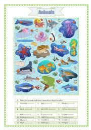 English Worksheets: Animals (part 1)