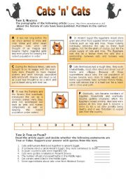 English Worksheets: Cats �n� Cats