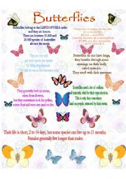 English Worksheets: BUTTERFLIES