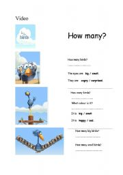 English Worksheets: Video class: For the Birds