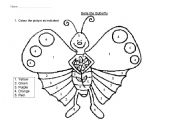 English Worksheets: Bella the butterfly