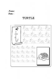 English Worksheets: TURTLE PREWRITING