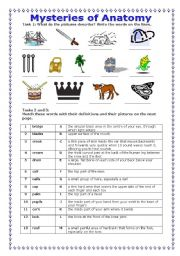 English Worksheets: Mysteries of Anatomy (23/07/08)