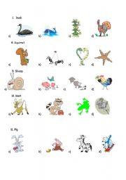 English Worksheet: ANIMAL TEST 2