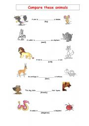 English Worksheets: Animal comparisons