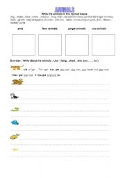 English worksheet: animals -3
