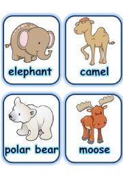English Worksheets:  FLASHCARD SET 3- WILD ANIMALS - PART 3