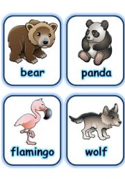 FLASHCARD SET 3- WILD ANIMALS - PART 4